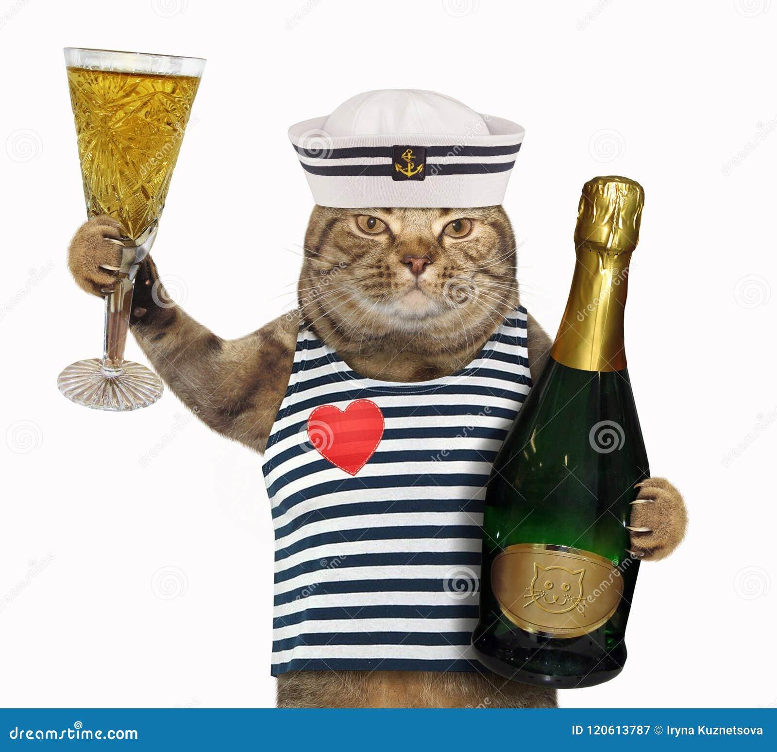 Marin De Chat Avec Le Verre De Vin Image stock Image du