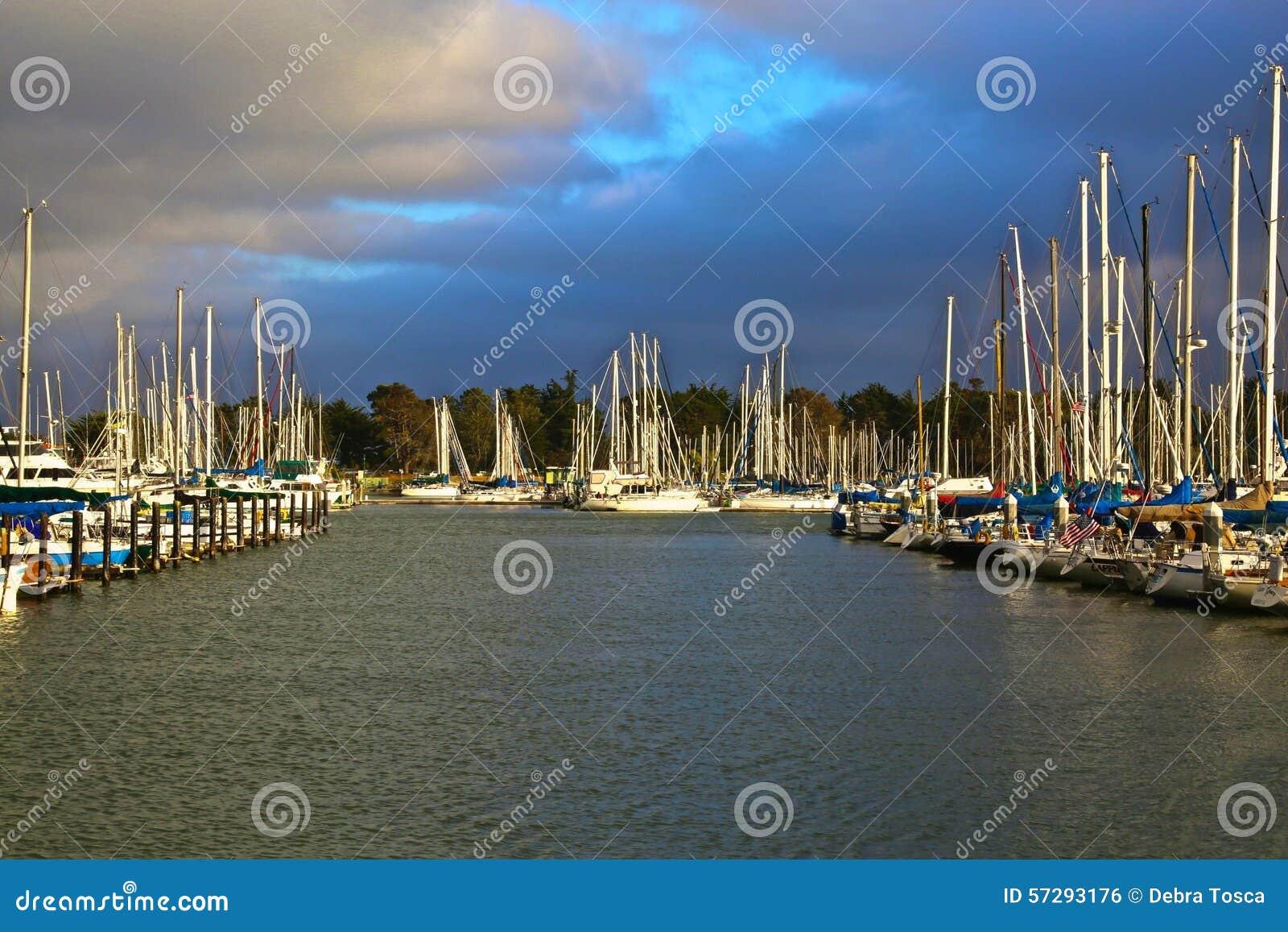Marina Berkeley California