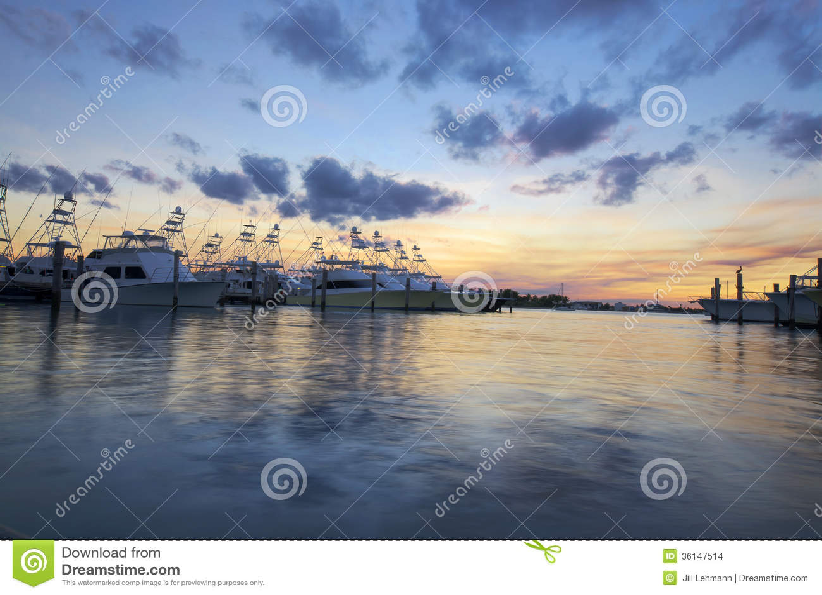 Southern Florida Marina with yachts at dusk