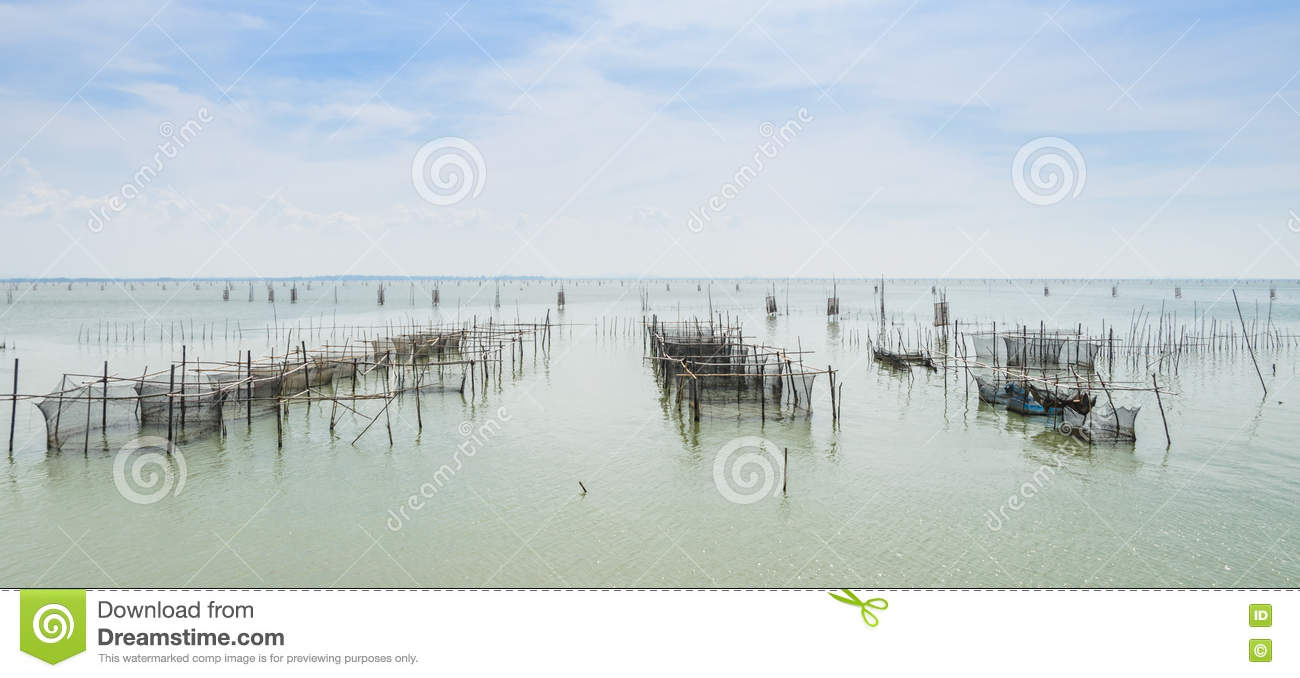 Marine Fish Farming In Thailand Stock Photo - Image of agriculture ...