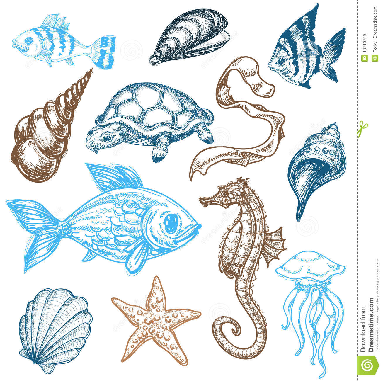 Monica Lee Does The Most Stunning Photo Realistic Drawings Weve Ever Seen further Royalty Free Stock Images Marine Life Collection Image18710709 furthermore Mood Board further 24507 7 besides 6044407426. on 3d animal drawings