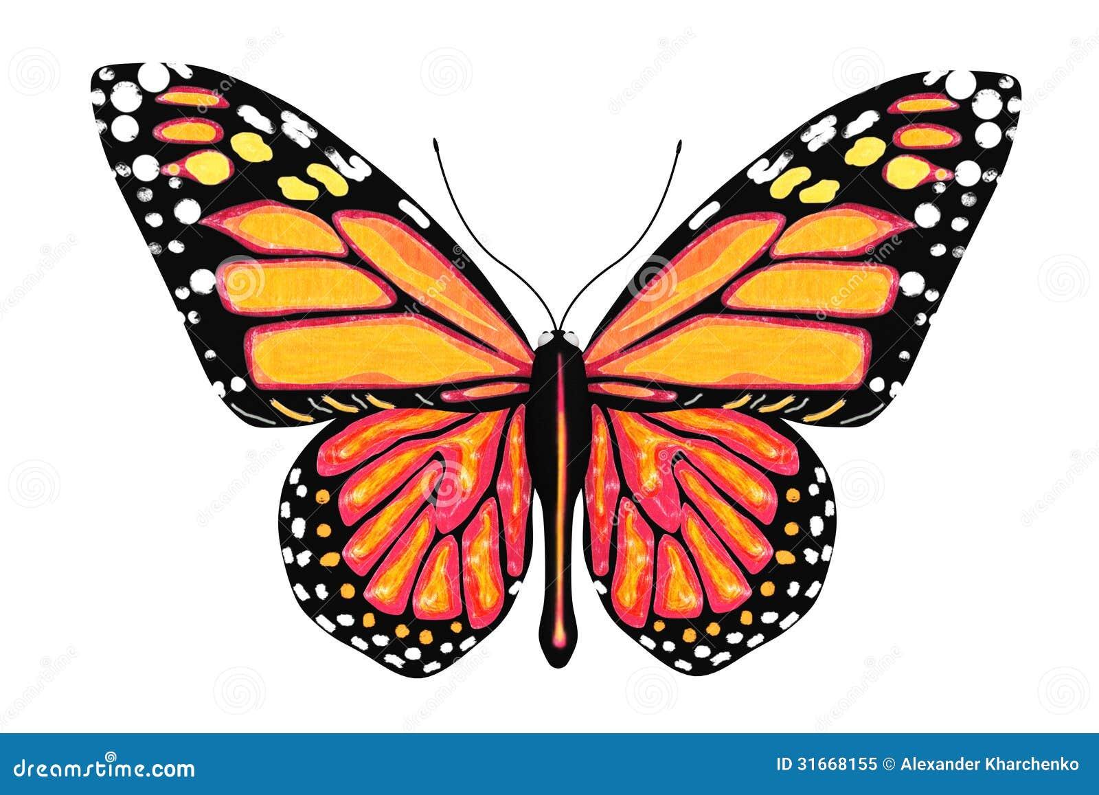 Mariposa con colores amarillos y anaranjados