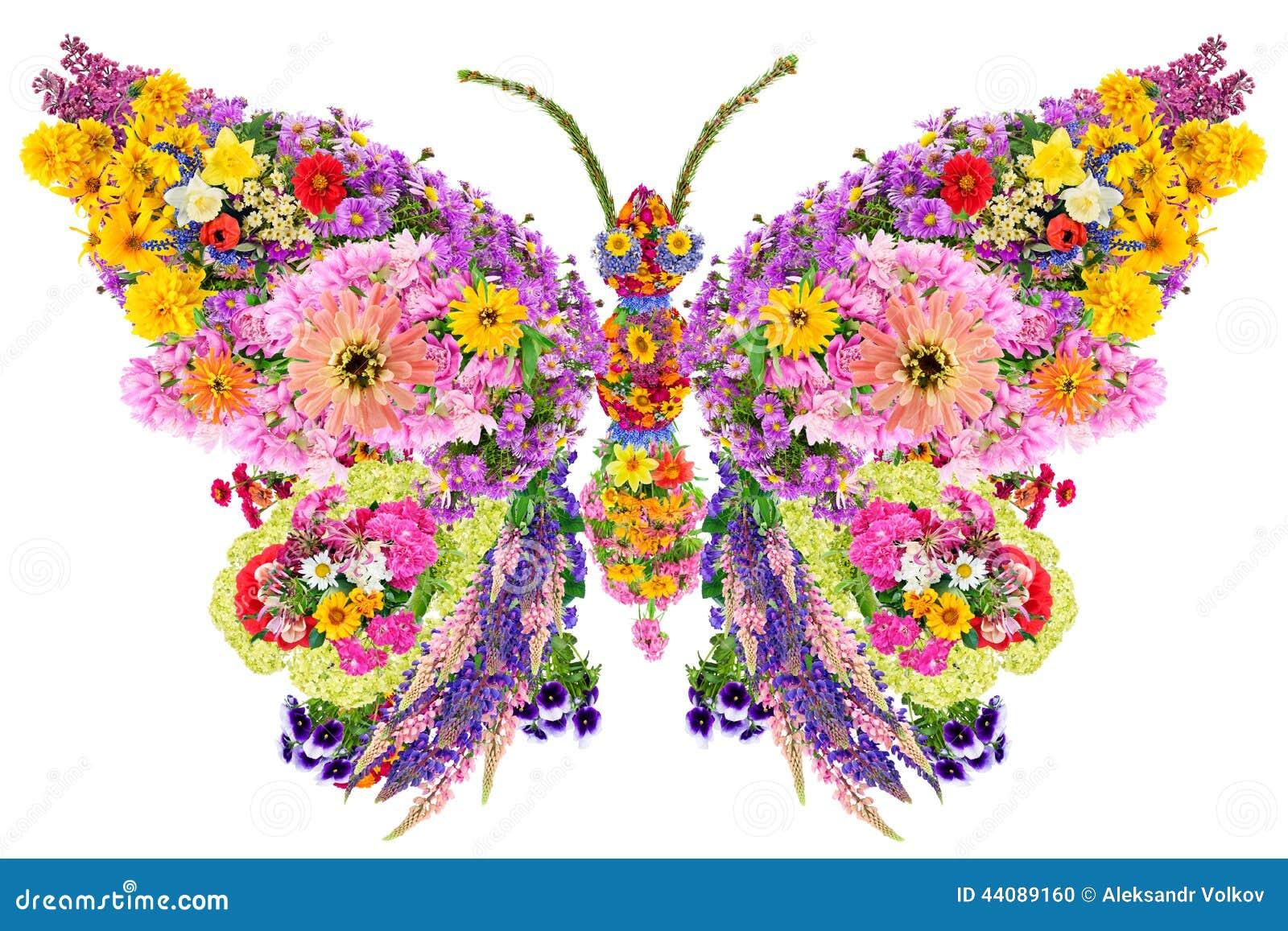 Mariposa de las flores del verano foto de archivo imagen - Flores de verano ...