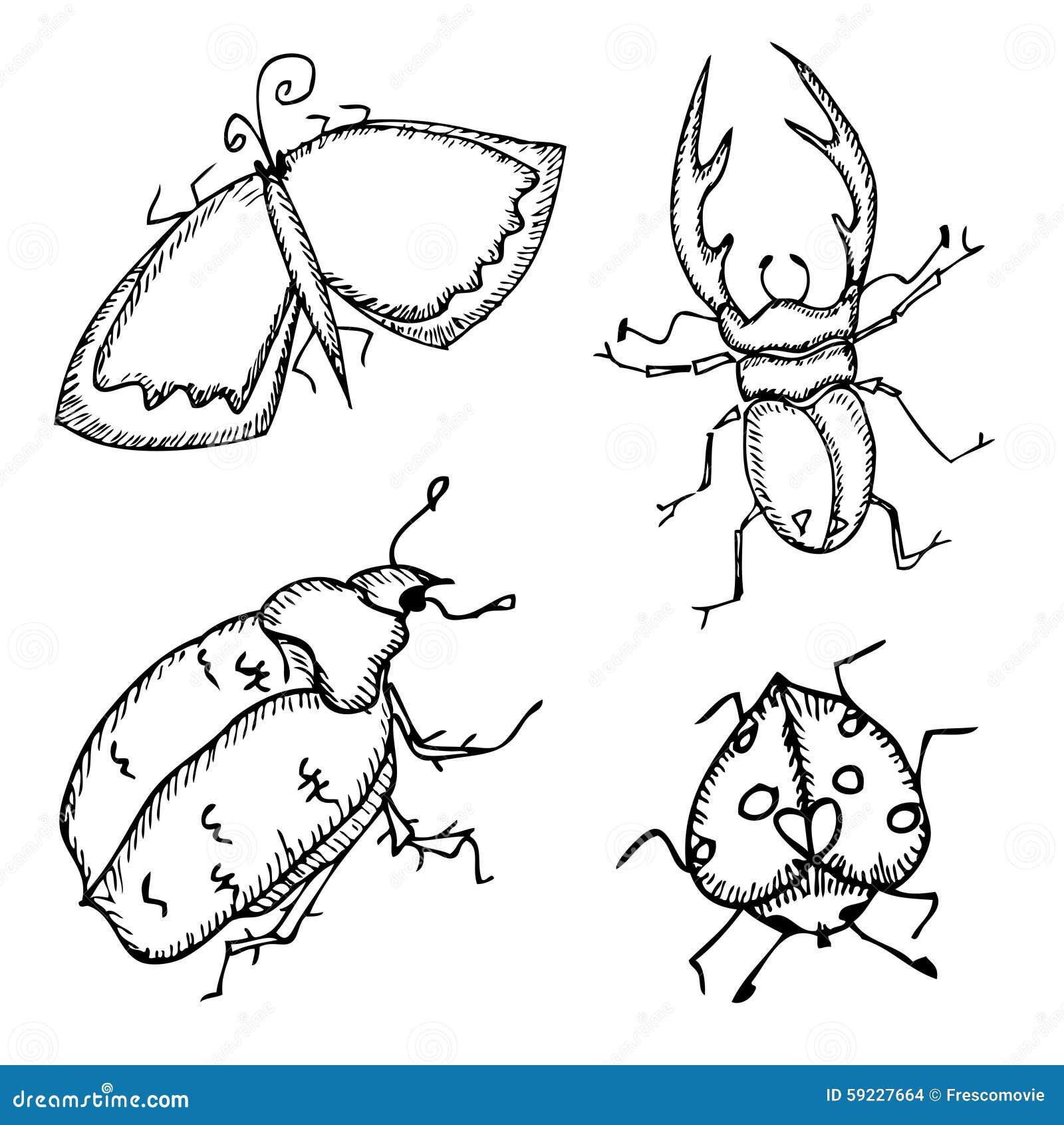 Download Mariposa e insectos ilustración del vector. Ilustración de grupo - 59227664