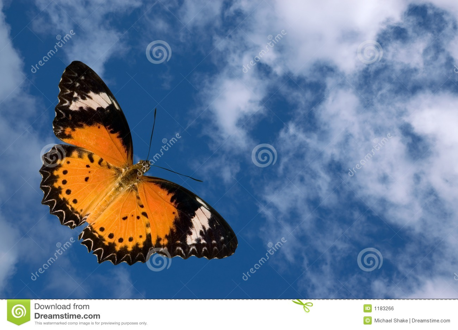 Mariposa y nubes