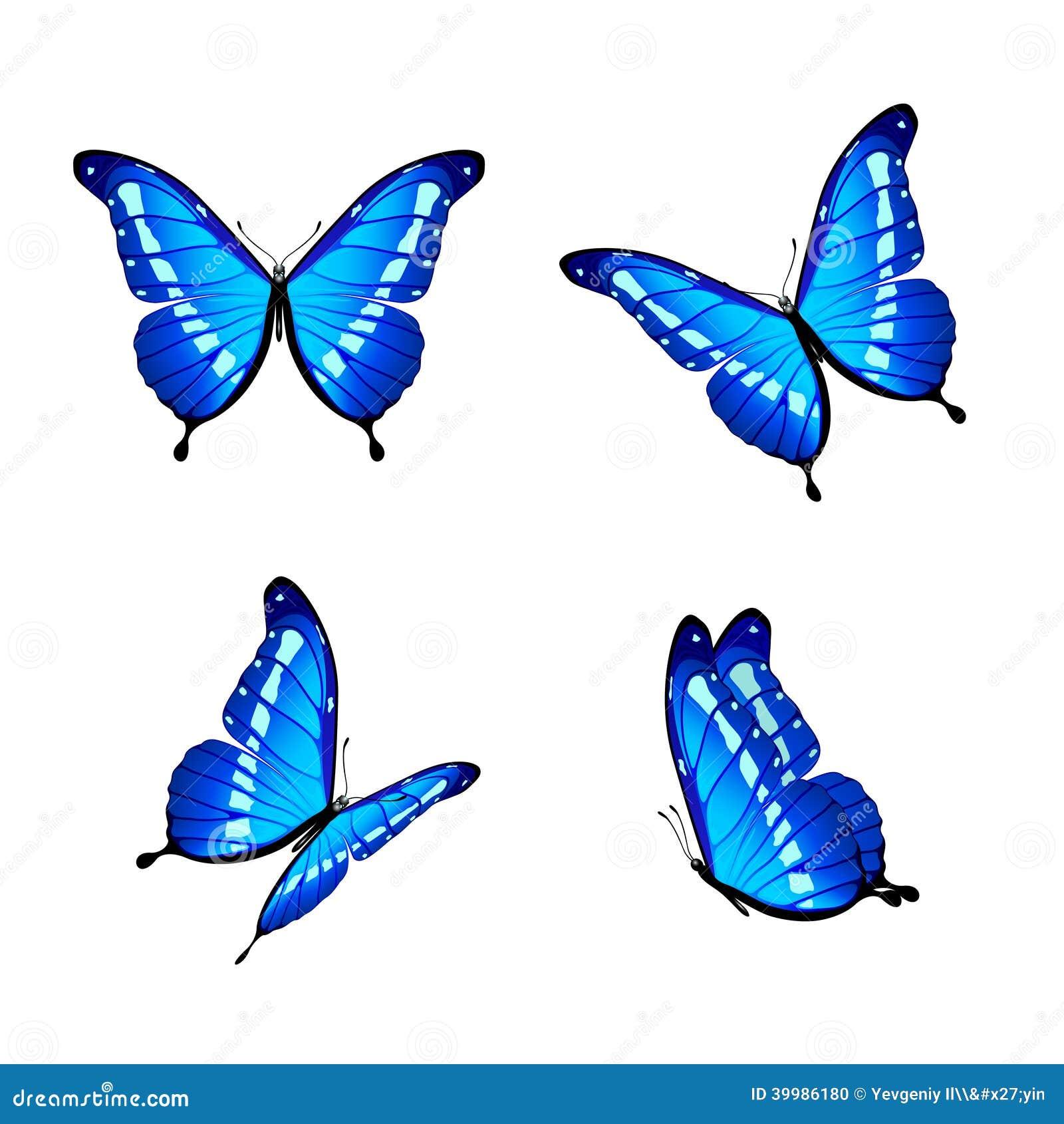 Flower Turquoise Stock Illustrations  11750 Flower