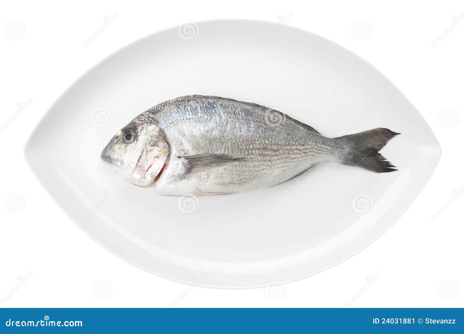 Marisco de Dorada em um prato oval branco. Peixes da brema.