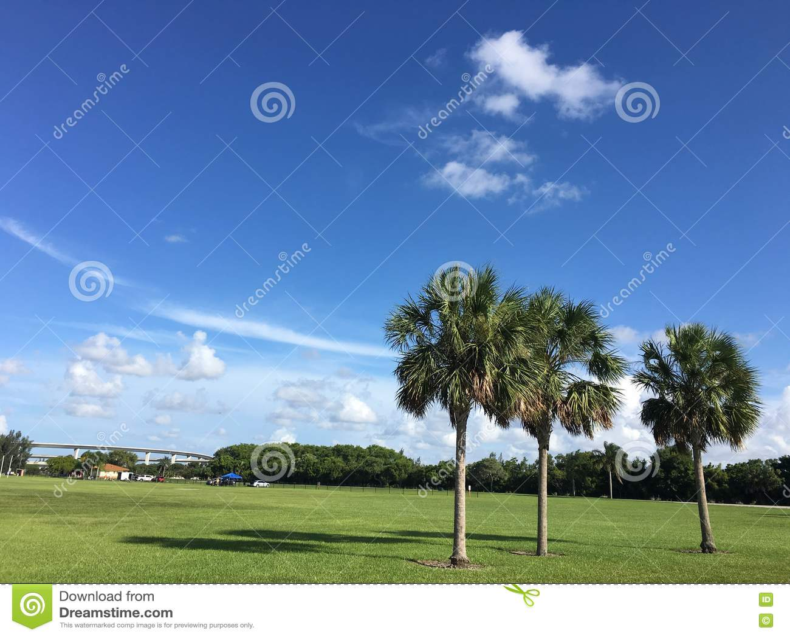 Marismas sul de Florida