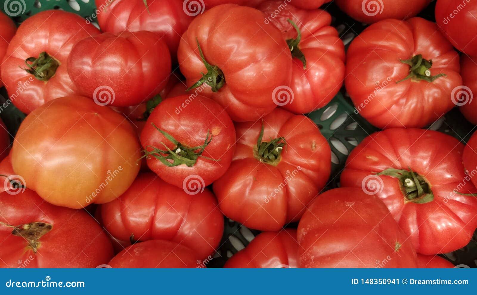 Tomatoes on a supermarket shelf.