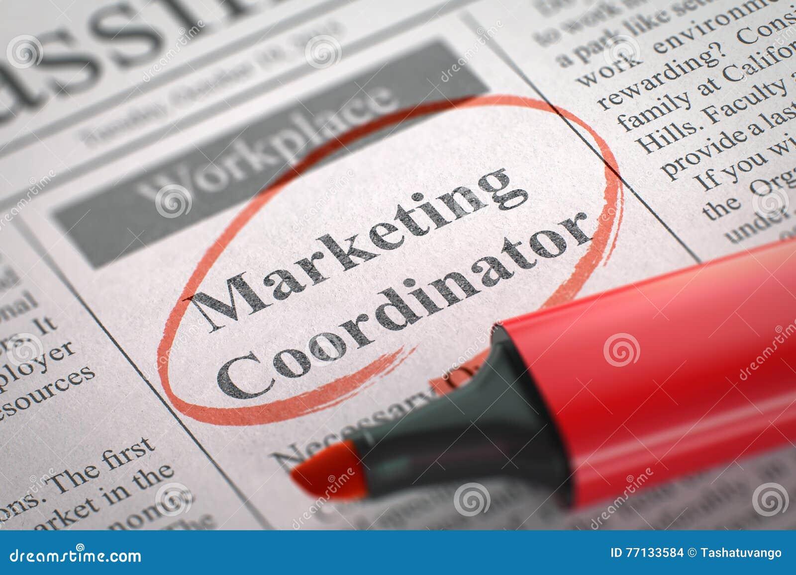 Marketing Coordinator Job Vacancy  3D Illustration  Stock