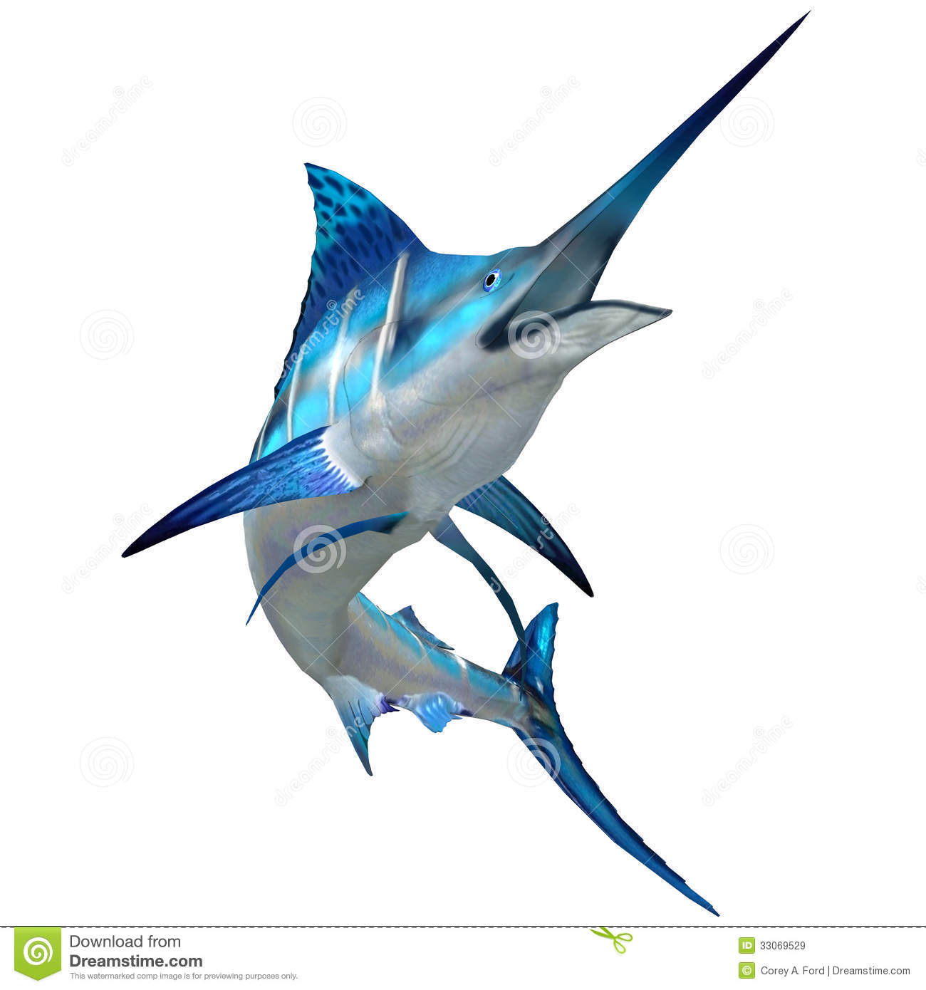 Marlin fish on white royalty free stock images image for Big blue fish