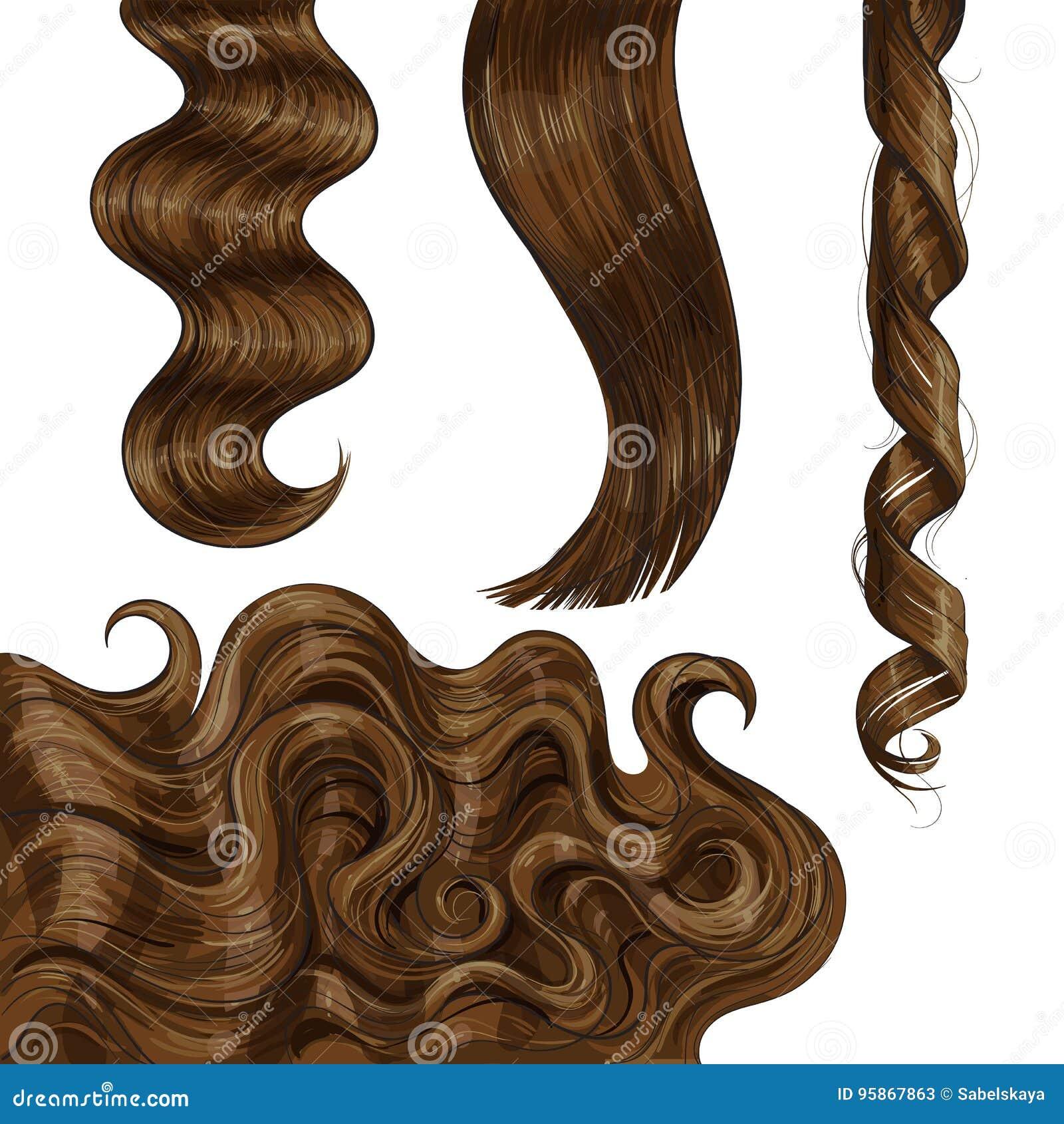 Marrom longo brilhante, favoravelmente em linha reta e ondas do cabelo ondulado