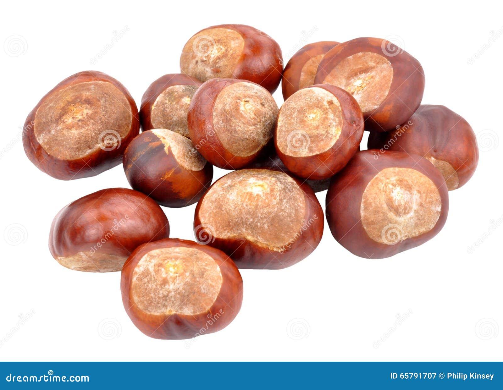 marrons d 39 arbre de marron d 39 inde photo stock image 65791707. Black Bedroom Furniture Sets. Home Design Ideas