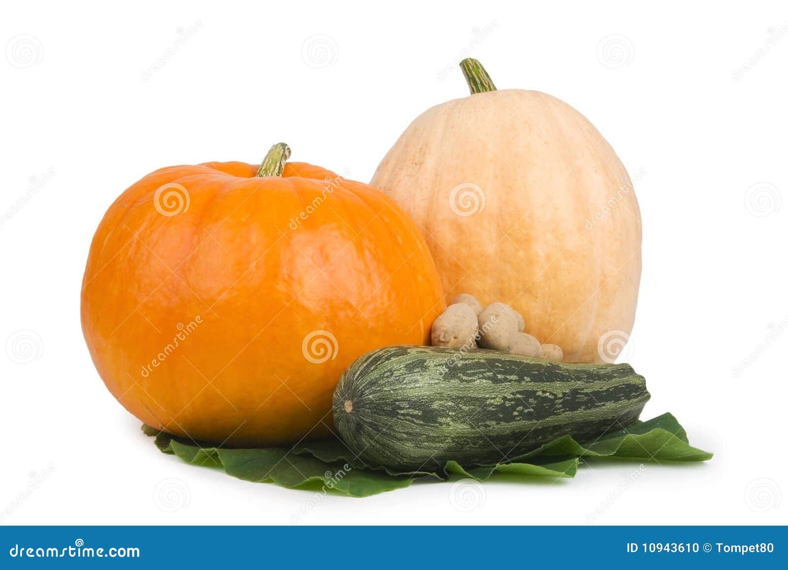 Marrows pumpkin two