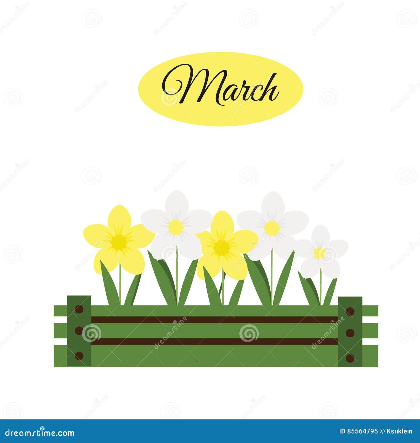 Marsbaner med påskliljor Pingstlilja i träasken som arbeta i trädgården
