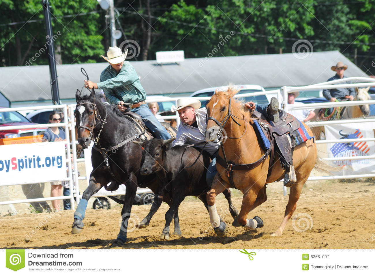 Marshfield Massachusetts June 24 2012 A Rodeo Cowboy