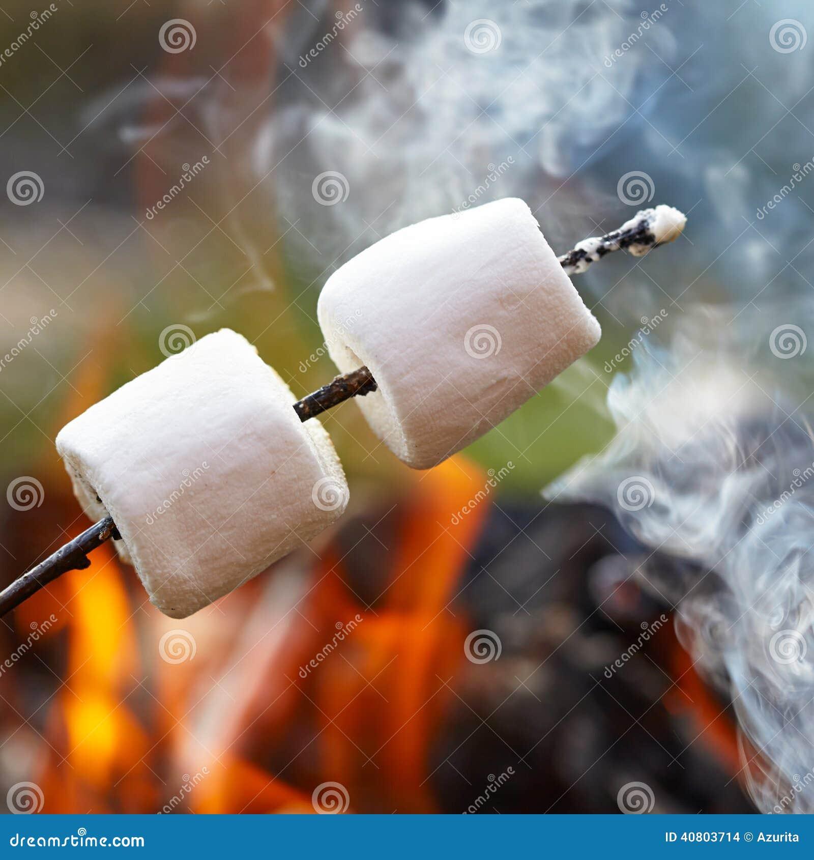 Marshmallow na kiju