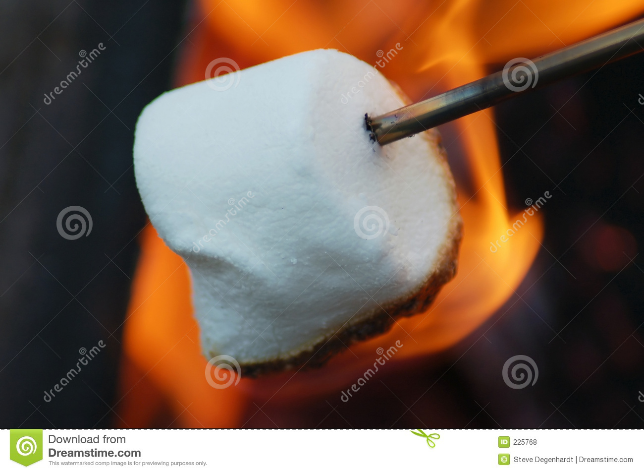 Marshmallow Roasting