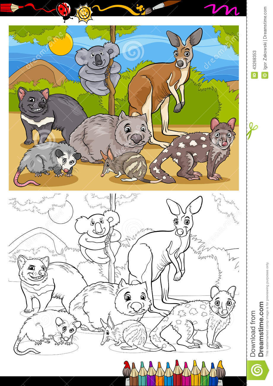 The zoology coloring book - Marsupials Animals Cartoon Coloring Book Stock Vector