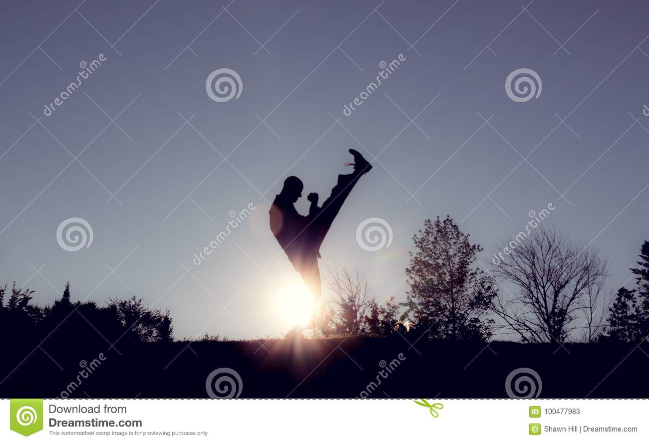 Martial Artists Silhouette - Axe Kick Stock Image - Image of