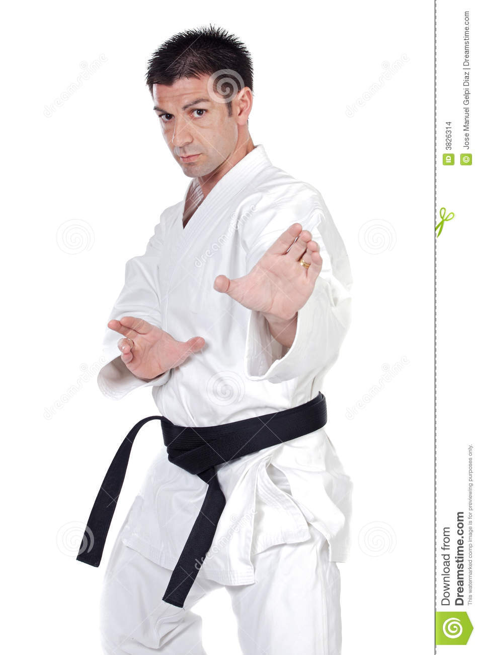 Martial Arts Stance Stock Photo Image Of Martial Background 3826314