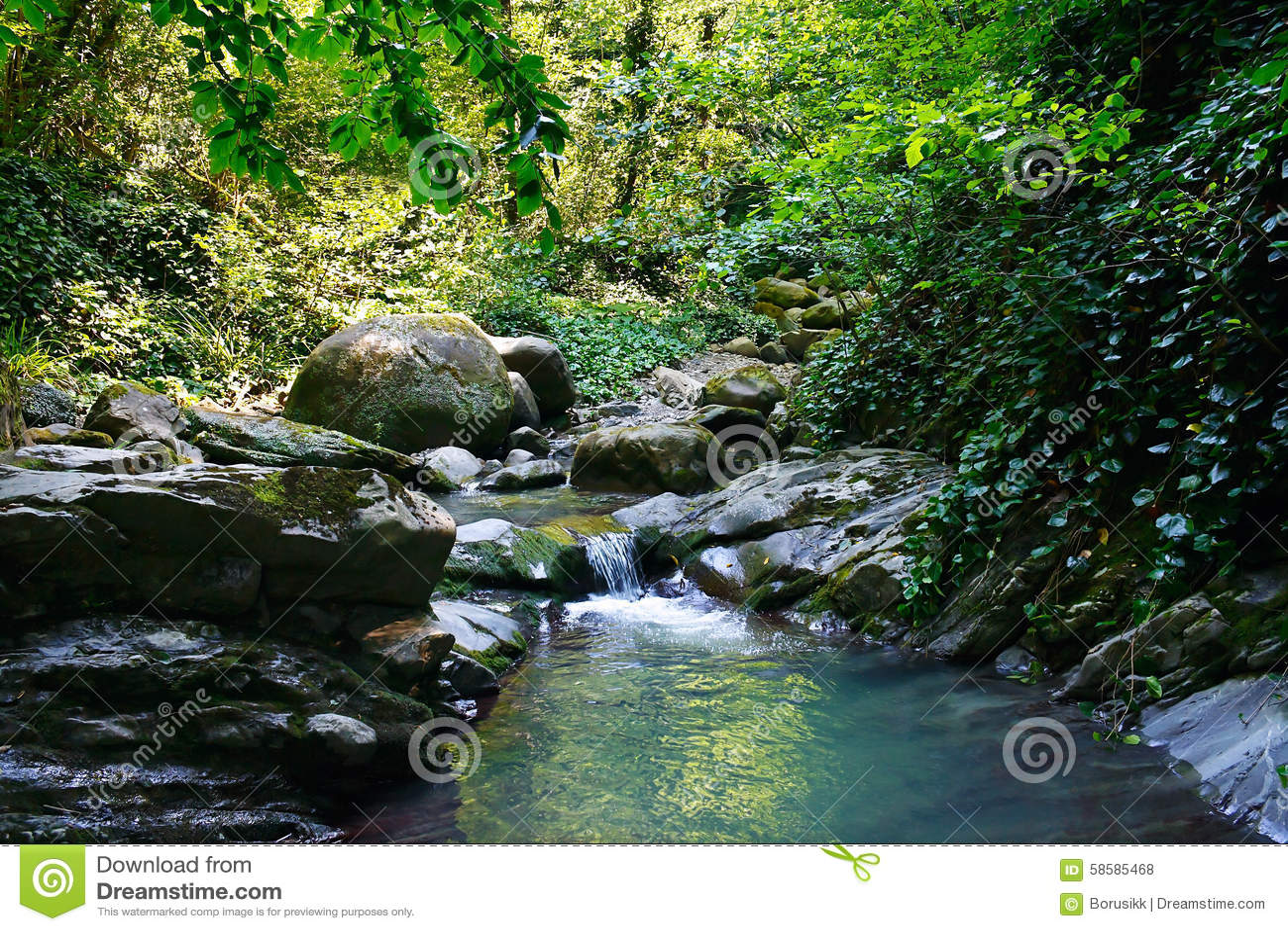 Stream of harmony 48