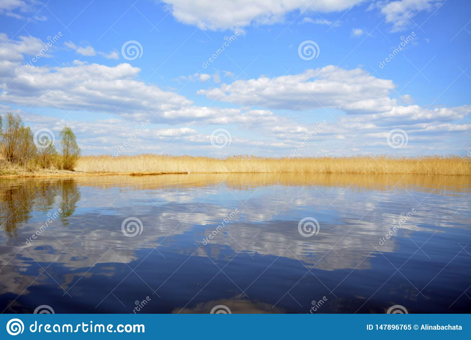 Marvelous nature of Lake Seliger