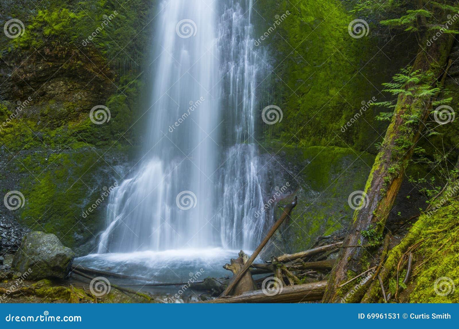 Marymere Falls Olympic National Park Washington state