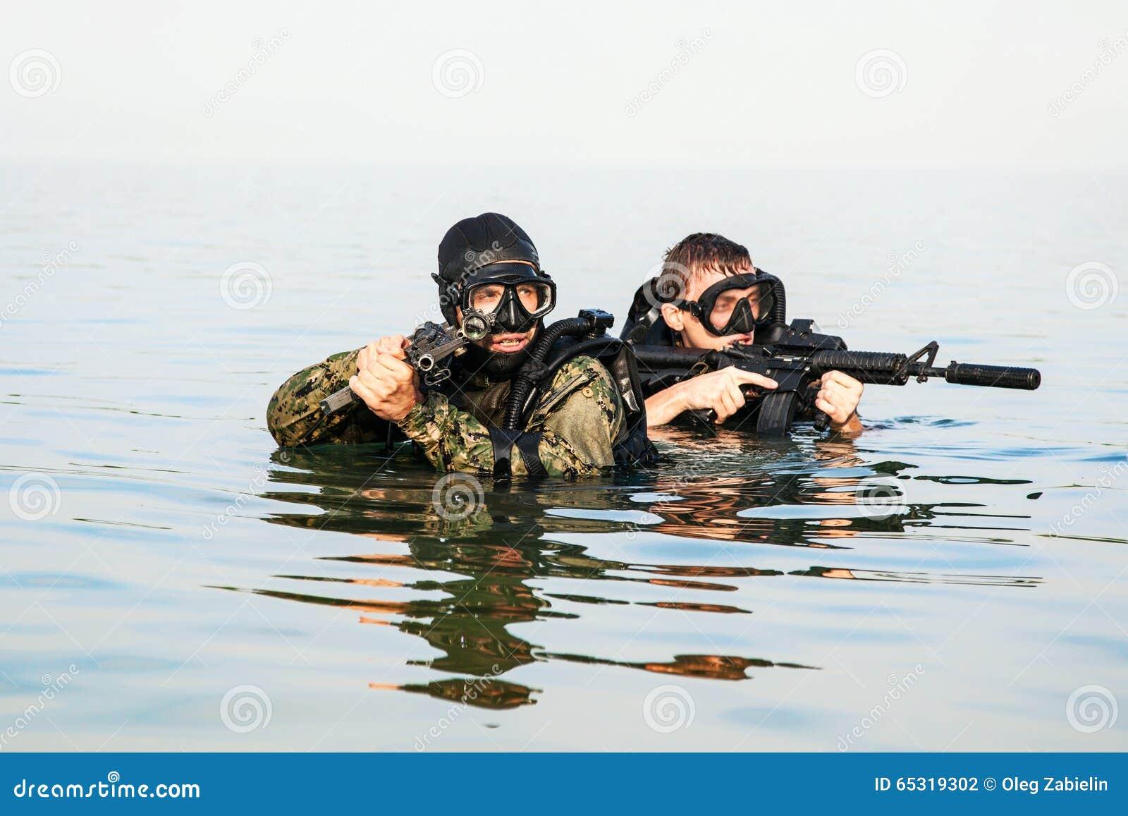Marynarki wojennej foki płetwonurkowie