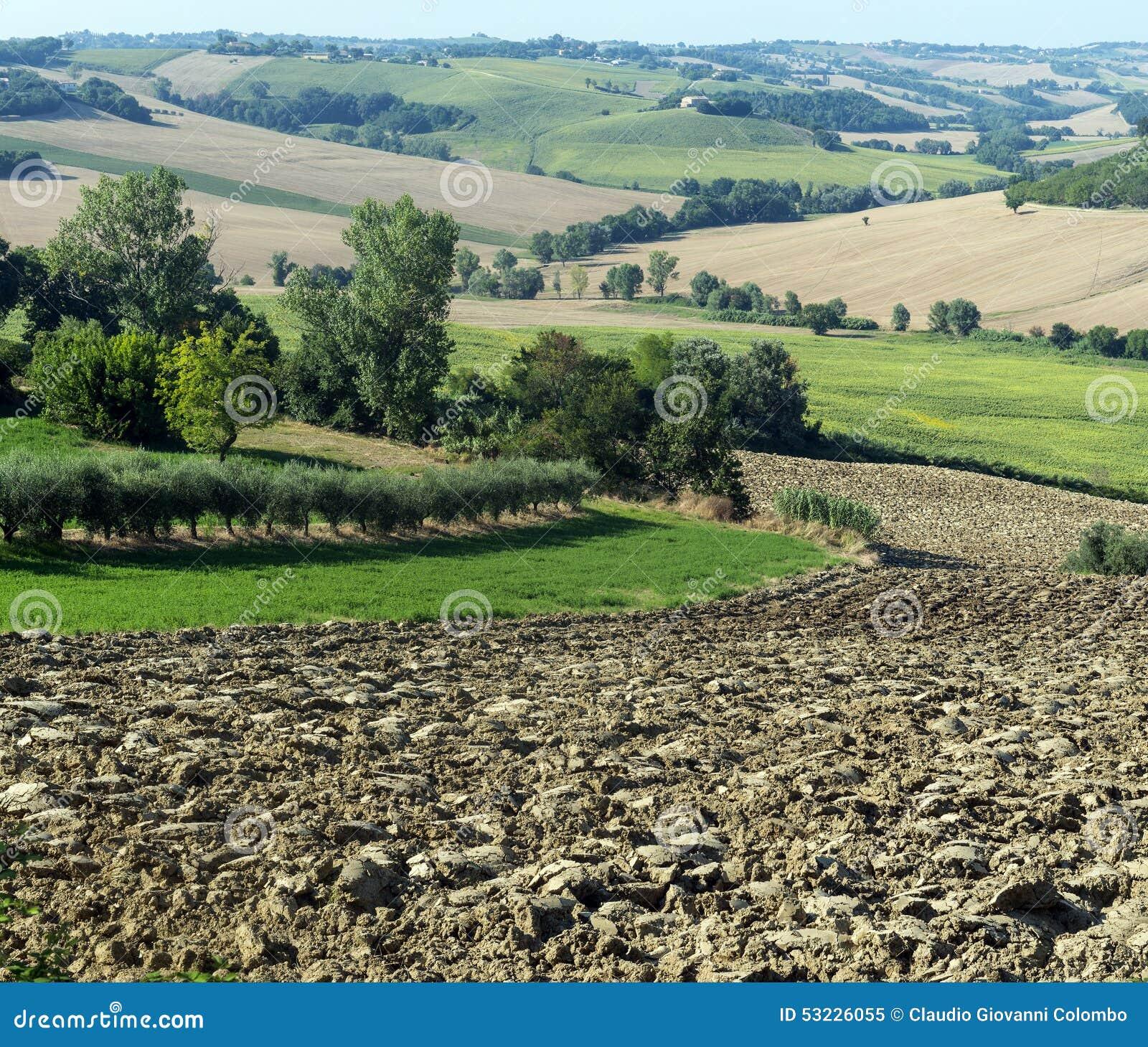 Marzos (Italia): paisaje del verano