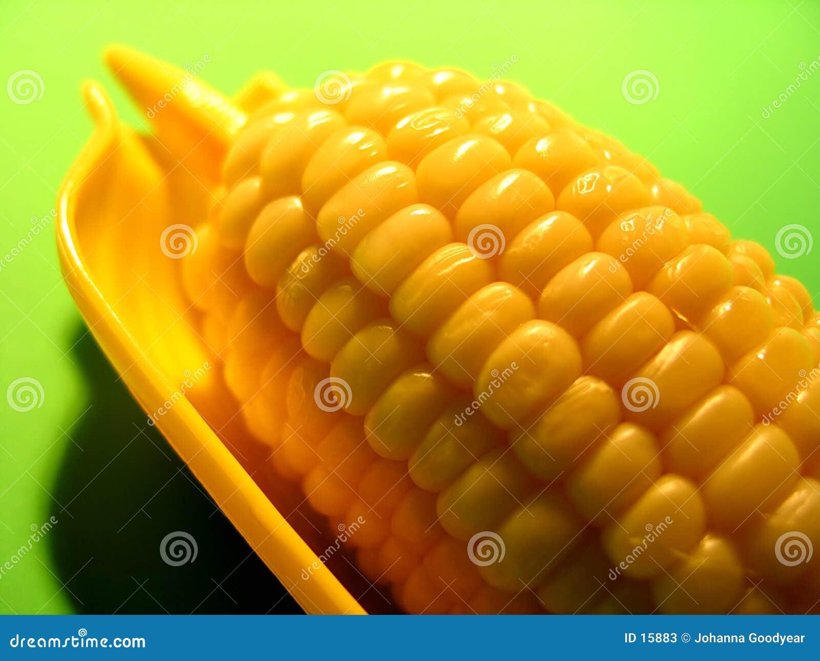 Masło 1 kukurydza