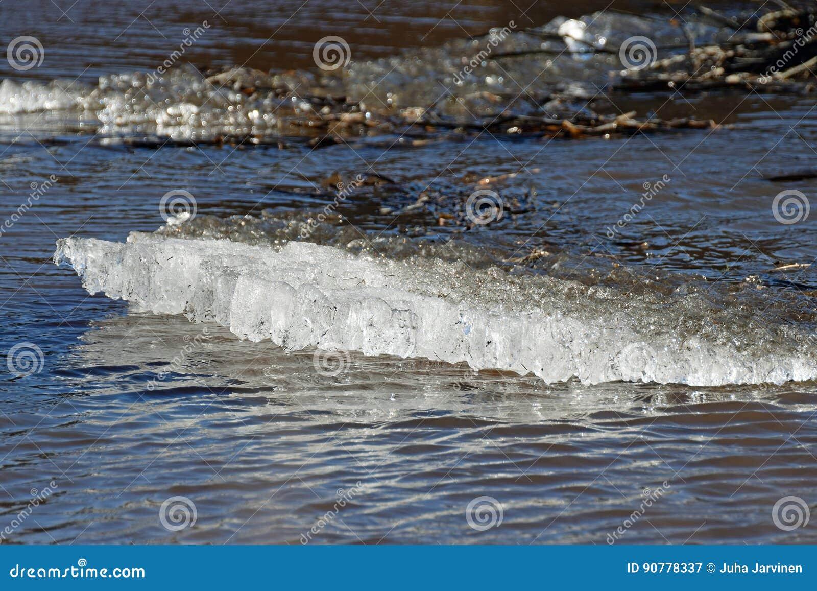 Masa de hielo flotante de hielo
