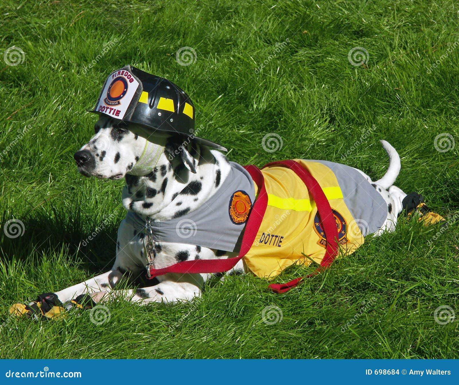 Mascote de Dalmation do departamento dos bombeiros