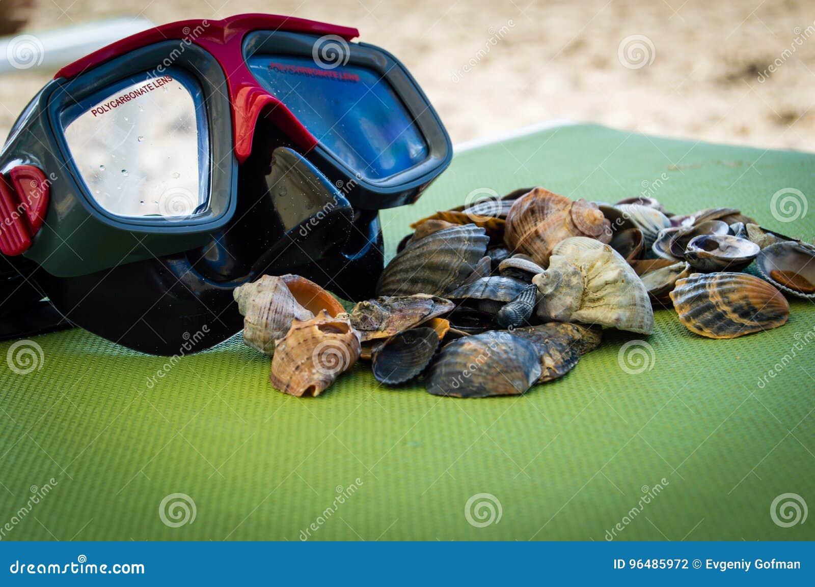 Mask scuba dive with sea shells on the sea coast. blue green background