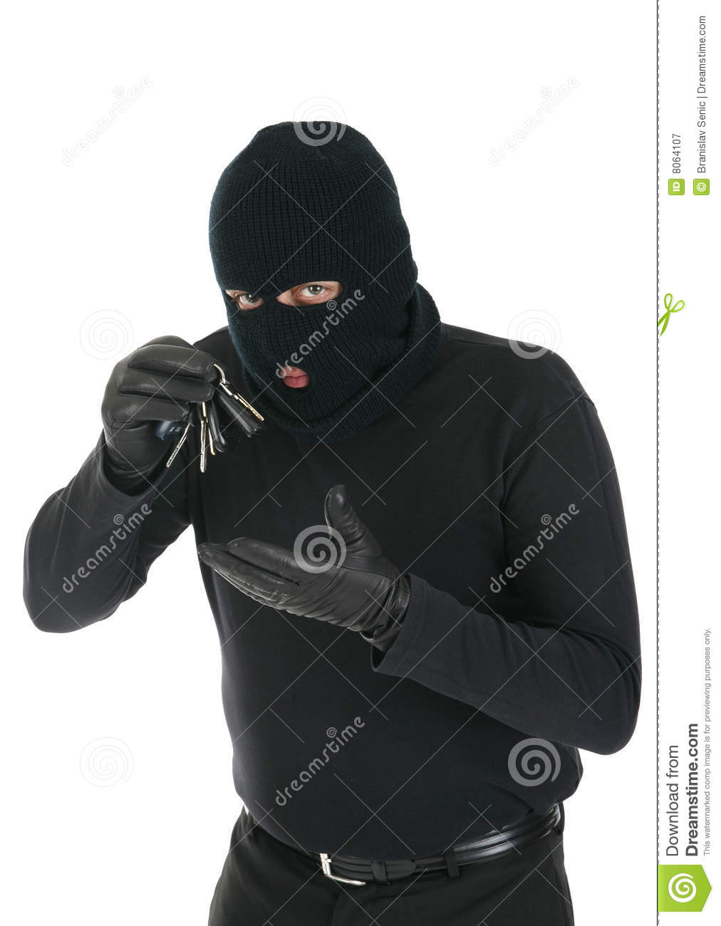 Masked Thief Royalty Free Stock Photography Image 8064107