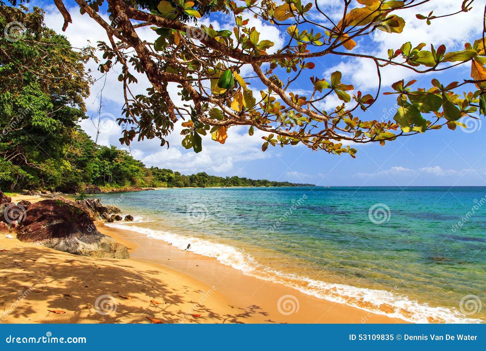 Masoala forest beach stock image Image of seascape