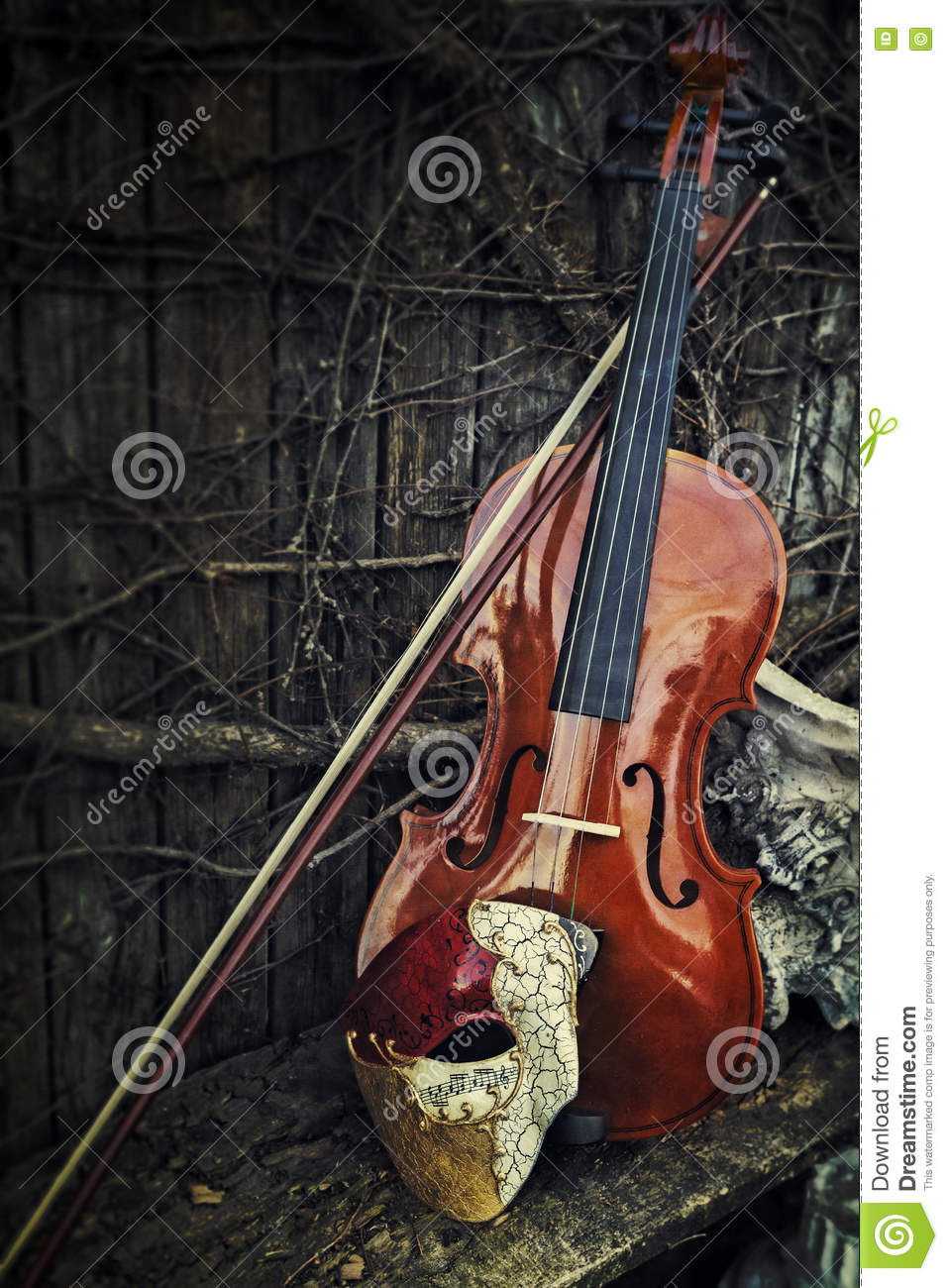 Masquerade - Phantom Of The Opera Mask With Violin Stock Image