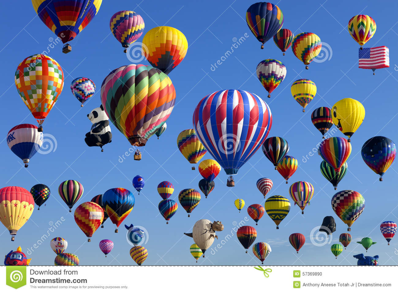 Mass Ascension - New Jersey Ballooning Festival