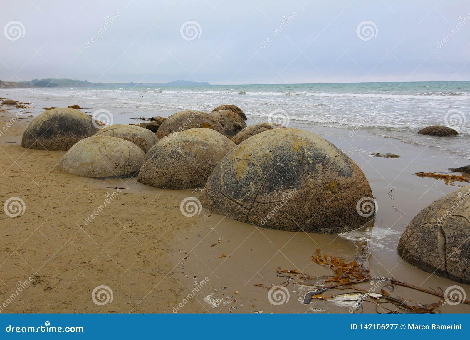 Massi di Moeraki in spiaggia di Koekohe sulla costa Wave tagliata di Otago della Nuova Zelanda