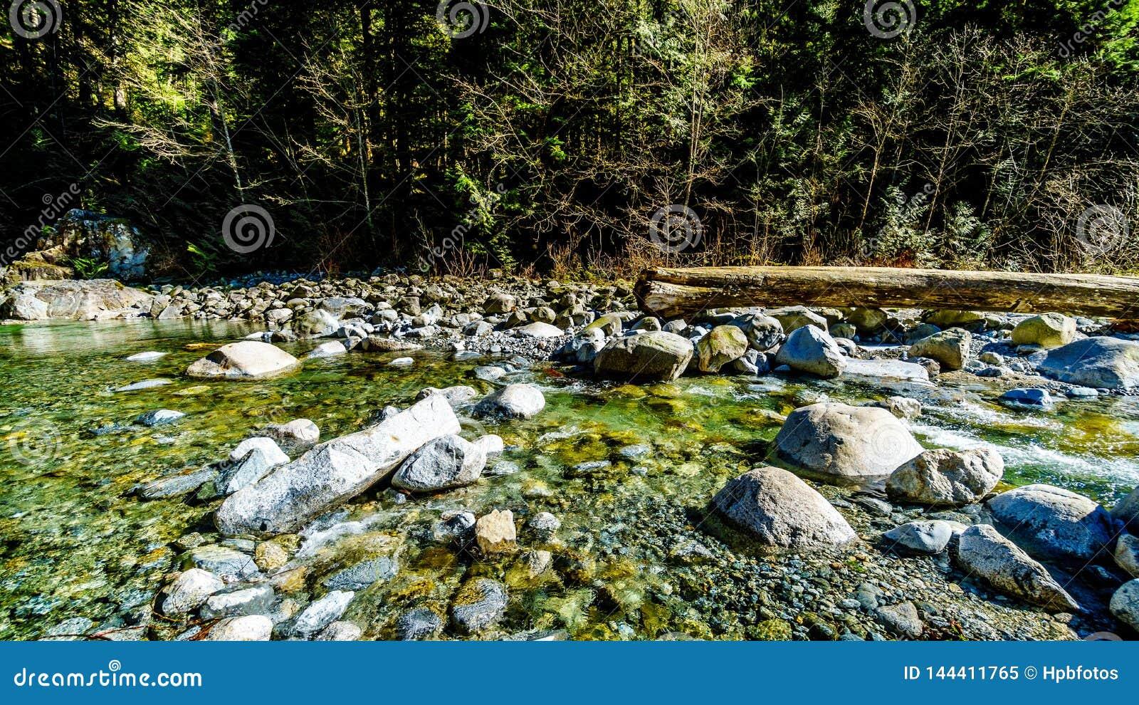 Massi nell acqua cristallina dell insenatura della cascata subito dopo le cadute nel parco regionale dei salti in serie, Columbia