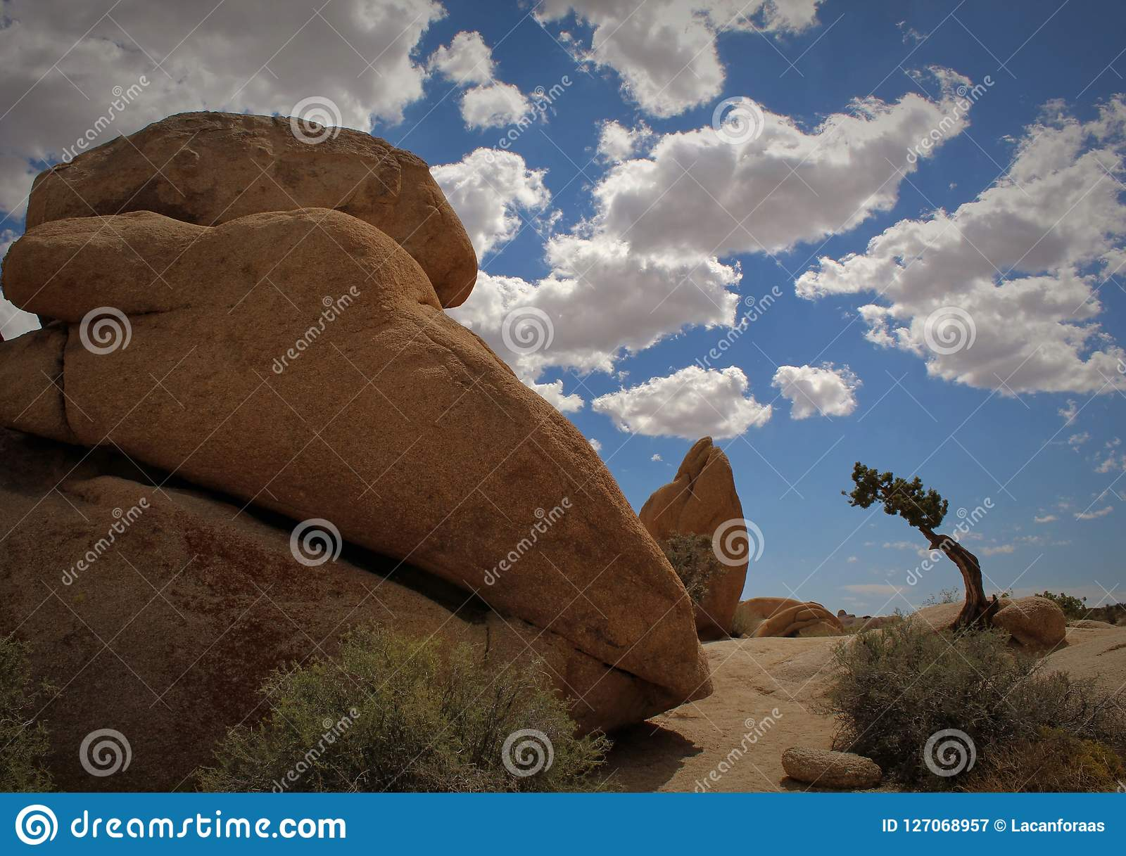 Massive Boulders At Jumbo Rocks Campground Joshua Tree