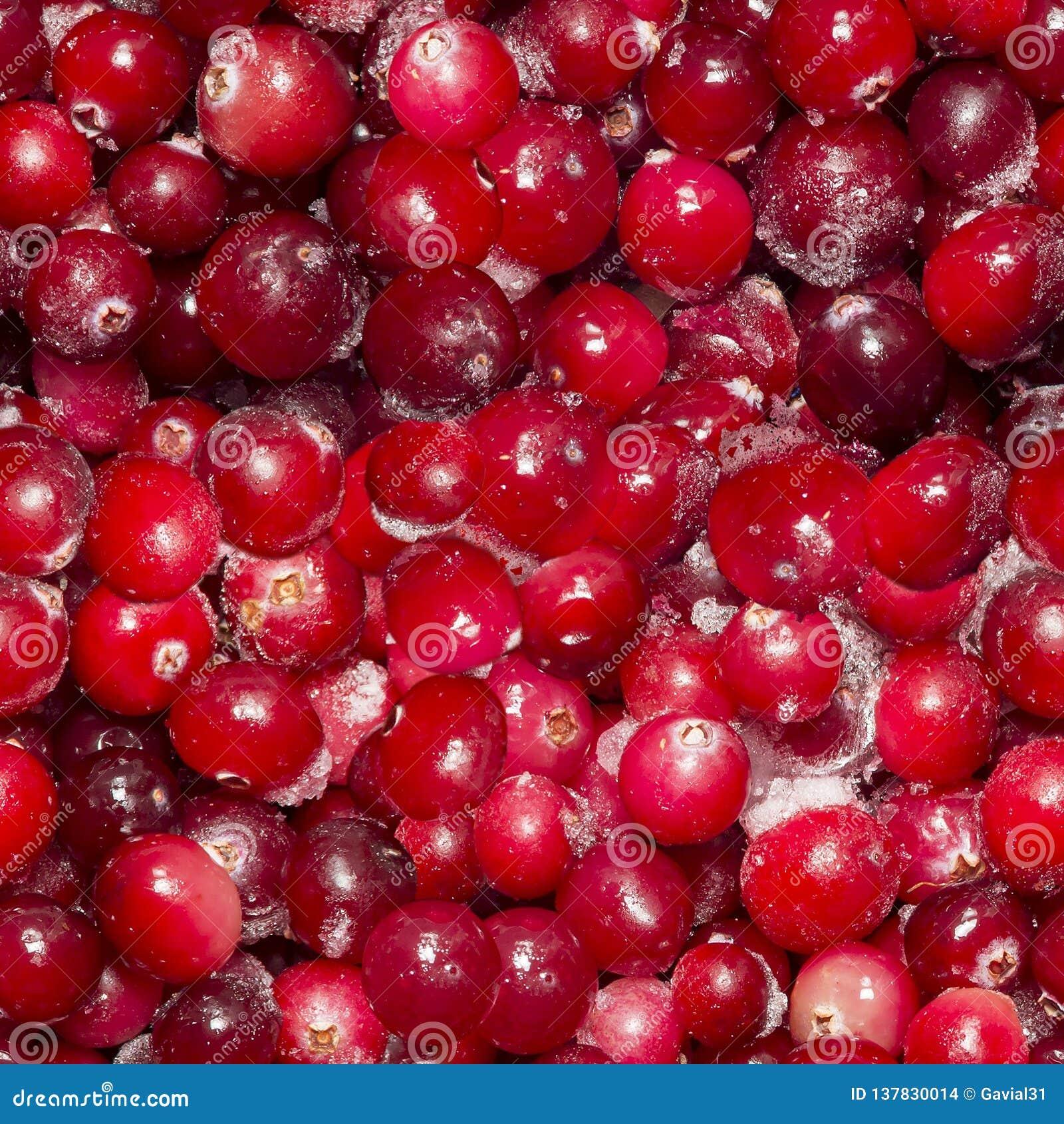 Massor av djupfrysta tranbär Sömlös bakgrund, textur av bär