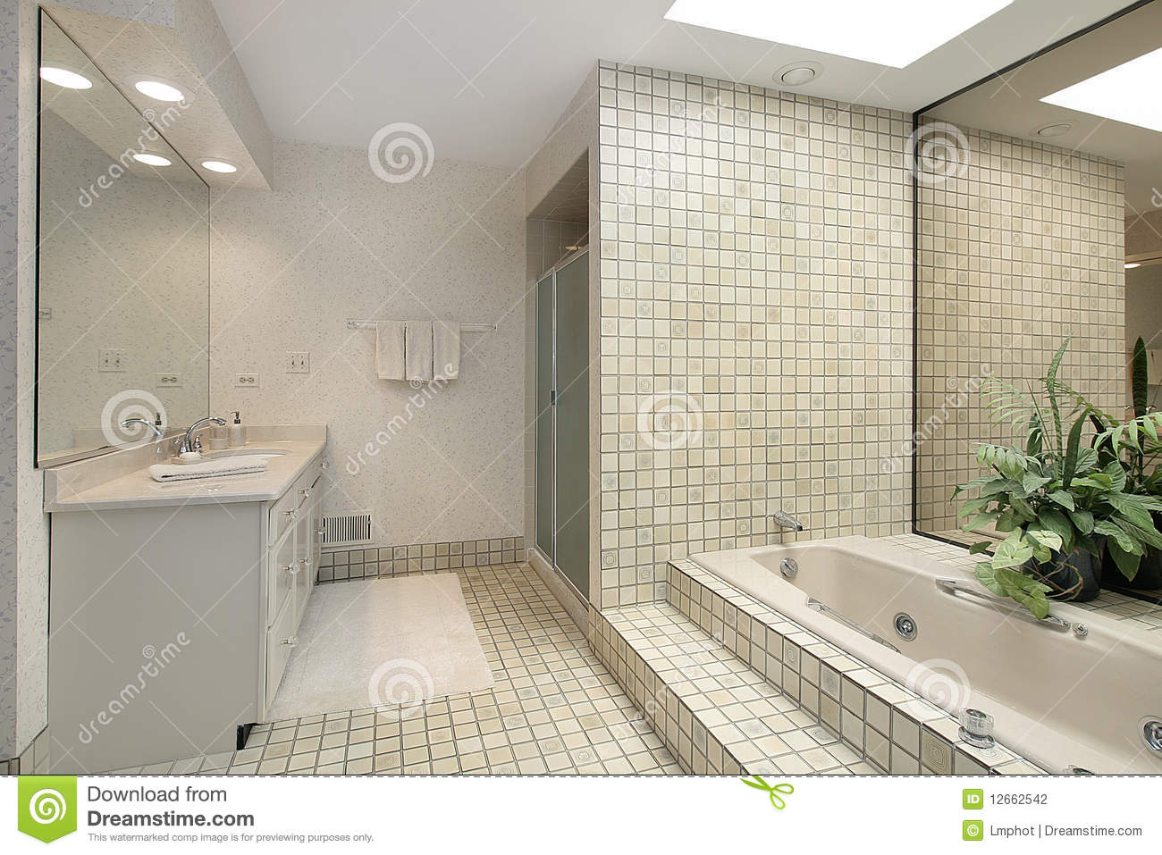 Master Bath With Step Up Tile Tub Stock Photo Image Of