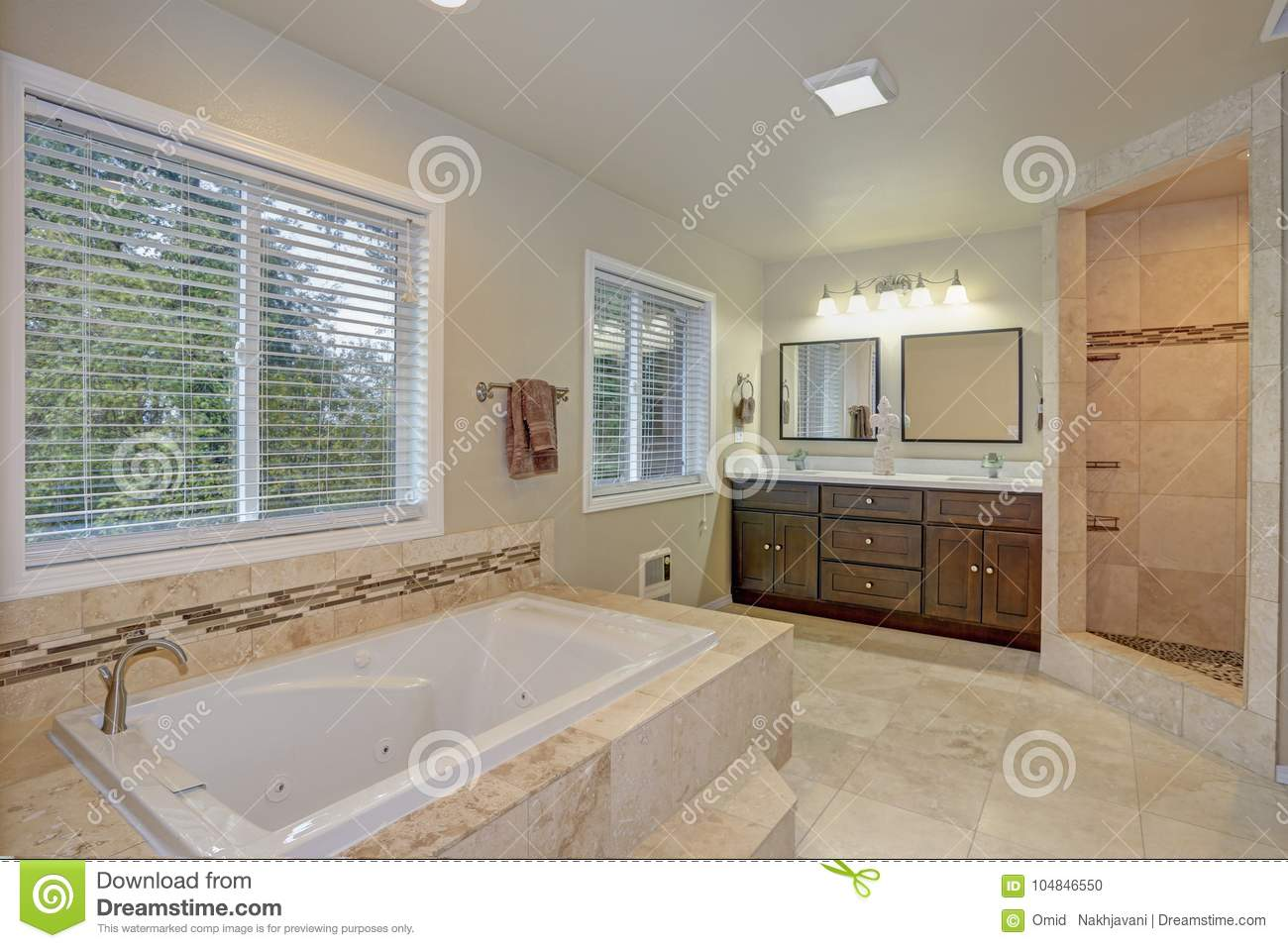 Master Bathroom Design With Luxury Tub And Walk-in Shower Stock ...