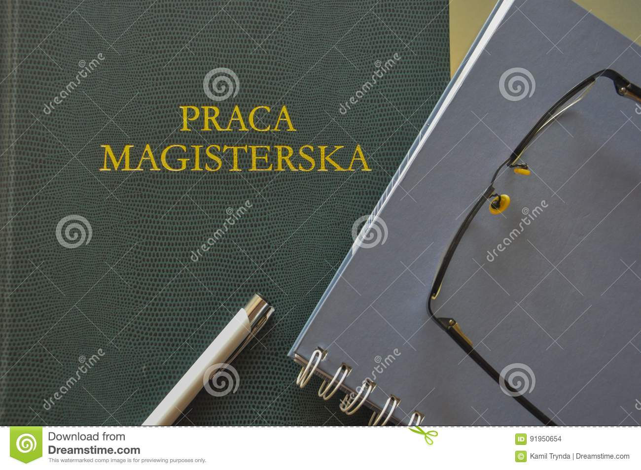 Master thesis in business
