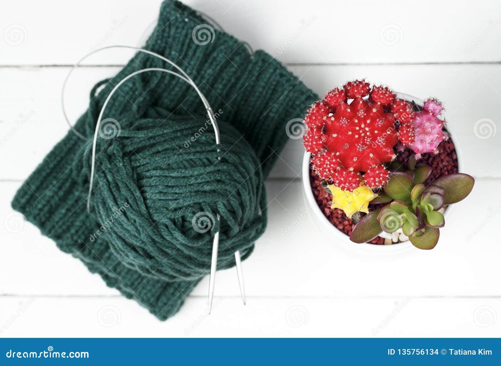 Matériel, aiguilles de tricotage et écheveau tricotés sur un fond blanc, vue supérieure