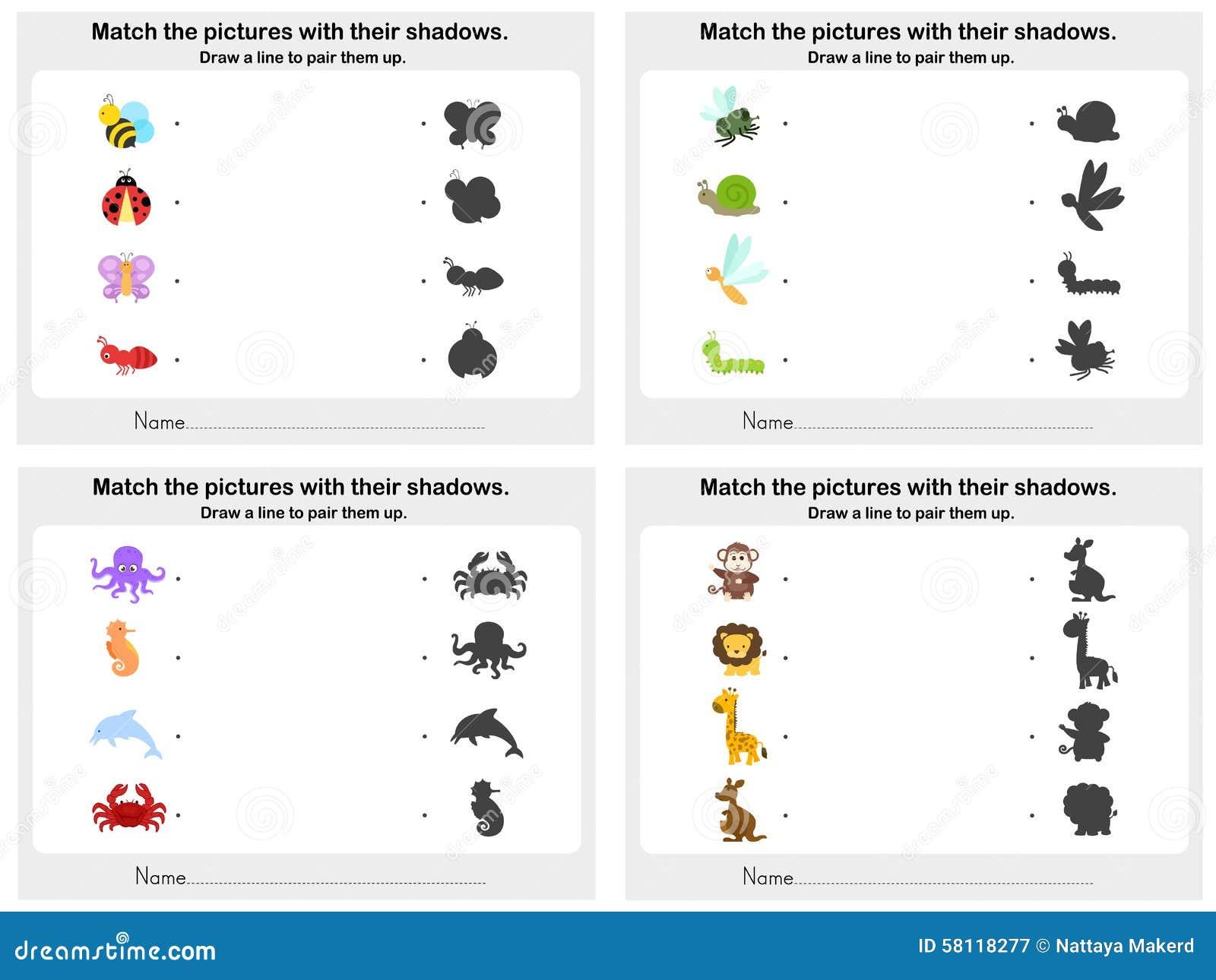 match animal shadow 4 sheet worksheet for education