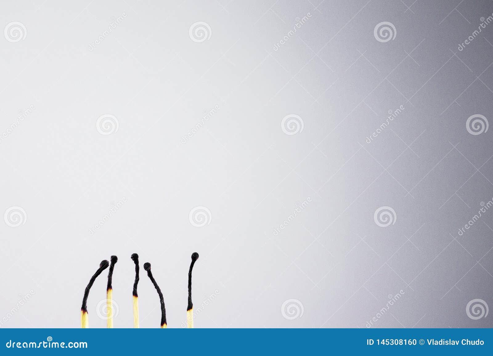 Matchs sur le fond noir et blanc Fond et match blancs Fond et match noirs