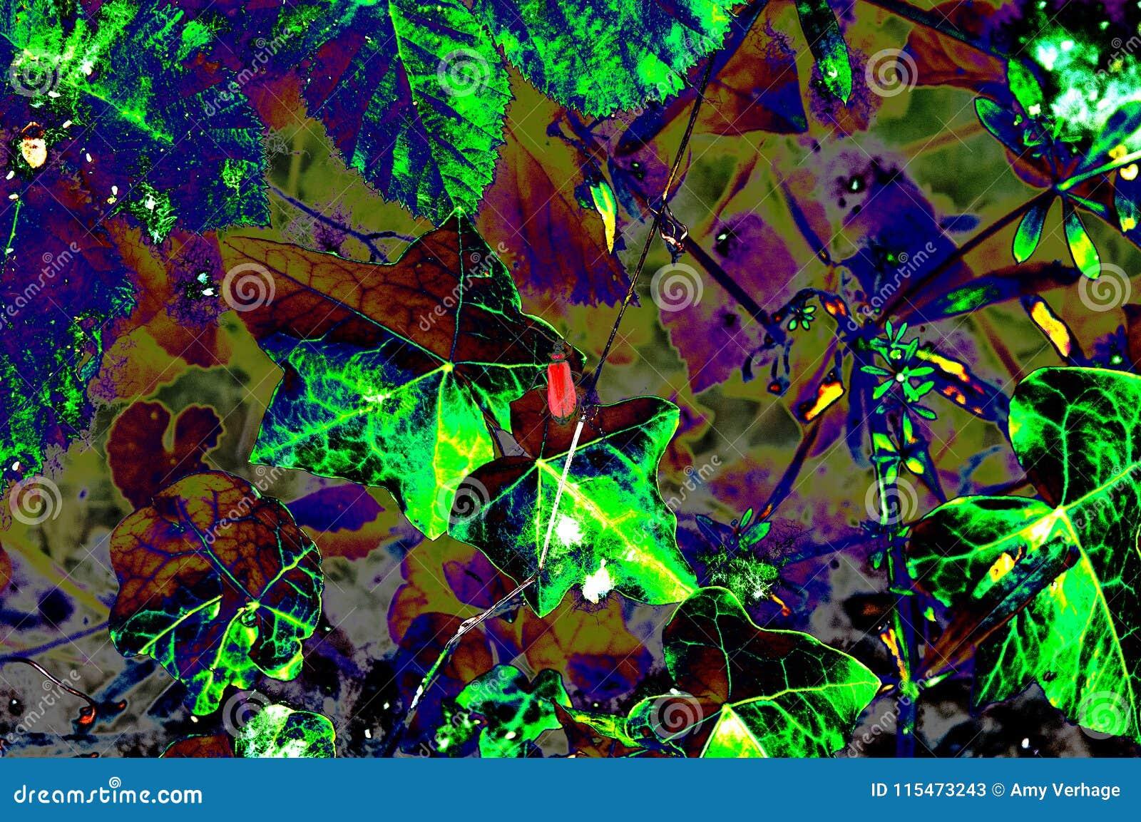 Materiale illustrativo delle foglie colorate in vari colori