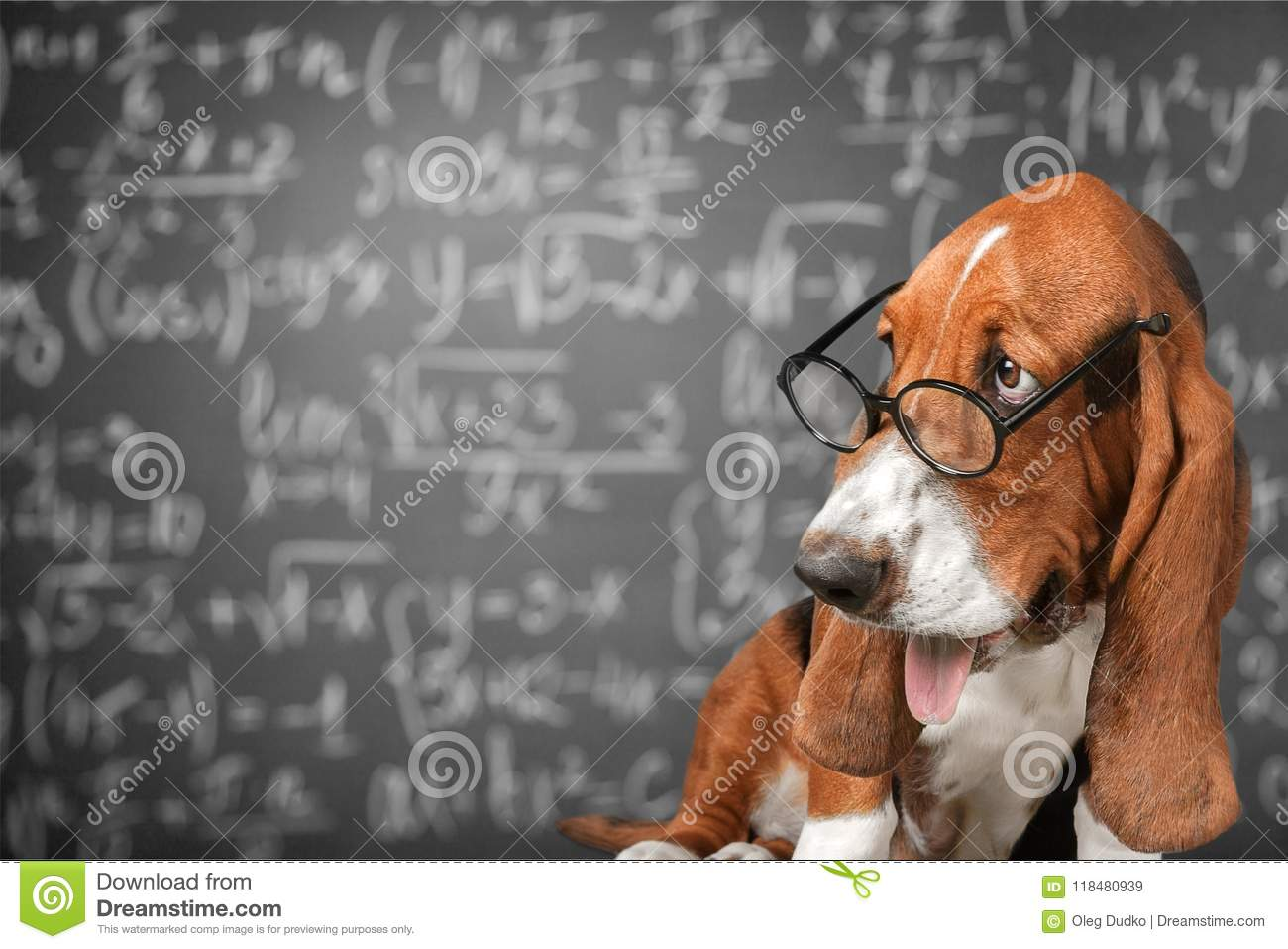 Download Math stock image. Image of genial, funny, academic, glasses - 118480939